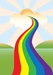 Regenbogenbrücke: Abschied nehmen vom Border Collie