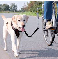 Hunde-Fahrradleine