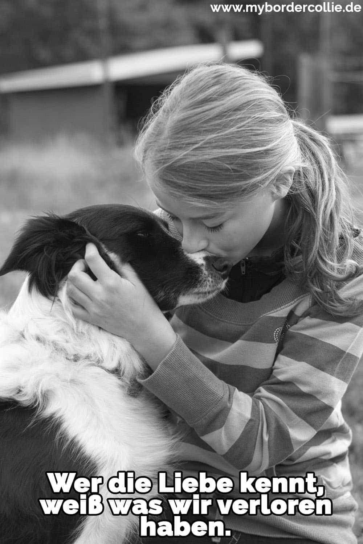 Ein Mädchen küsst ihren Border Collie