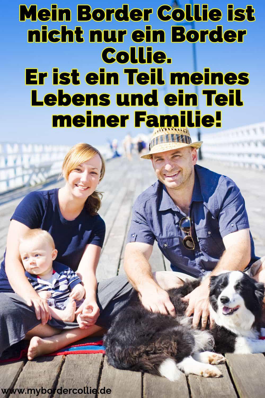 Eine Familie und Ihre Border Collie