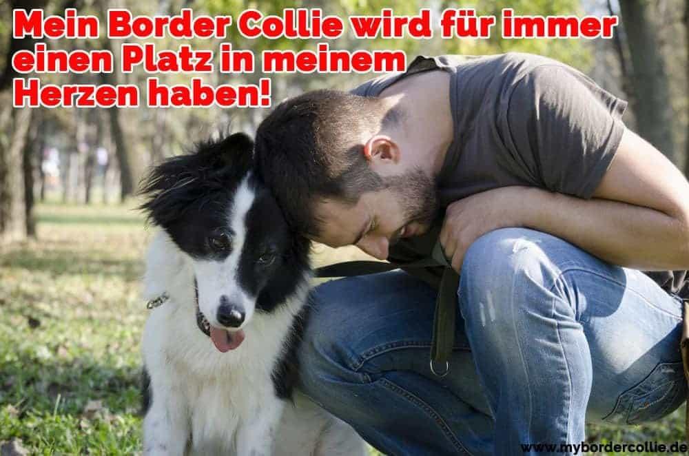 Ein Mann schmiegt sich in Ihrem Border Collie