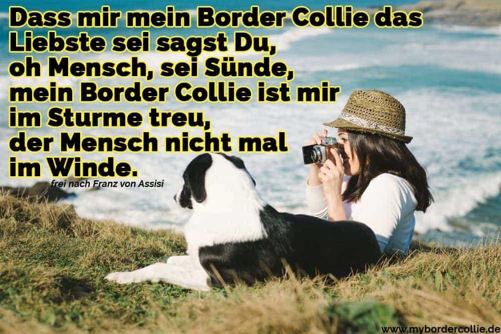 Ein Mädchen und ihr Border Collie das Meer beobachten